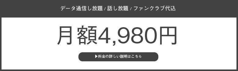 月額4,980円